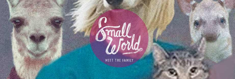 Small World Banner